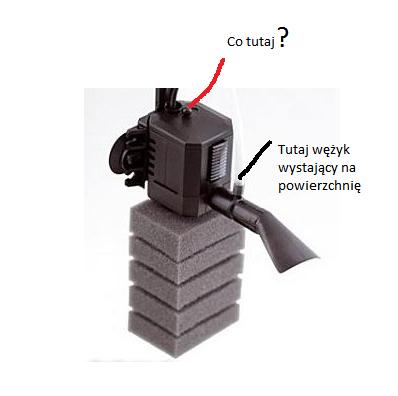 Obraz dołączony do pytania Jak podłączyć filtr aquael pat mini?