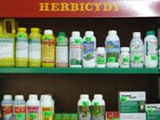 Jak bezpiecznie używać herbicydów