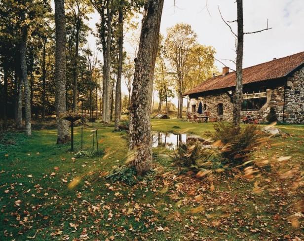 Jak dbać o ogród podczas jesieni