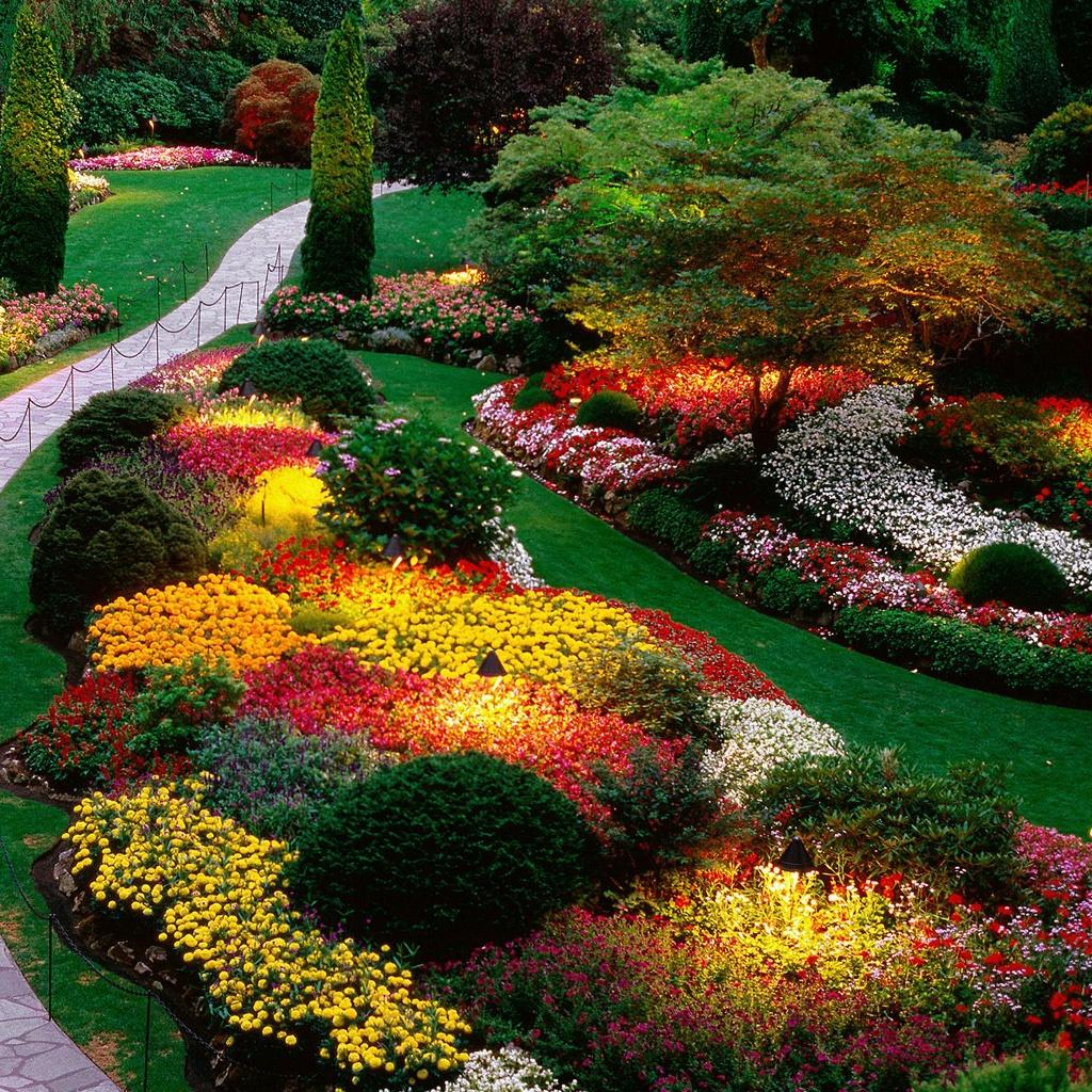 Jak łączyć kolory w ogrodzie