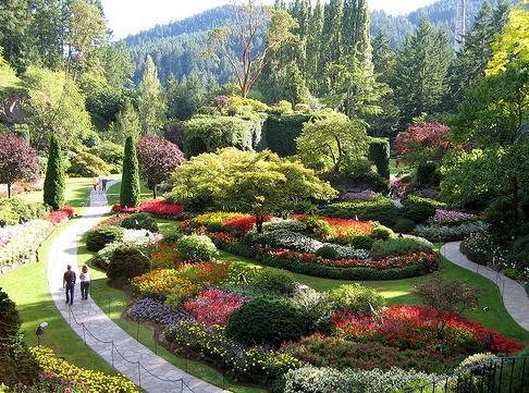 Darmowe programy do projektowania ogrodów