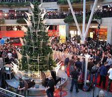 Jak przetrwać gorączkę świątecznych zakupów
