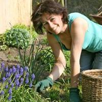 Jakie prace ogrodowe wykonywać we wrześniu