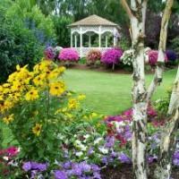 W jaki sposób dobierać kolorystycznie rośliny w ogrodzie