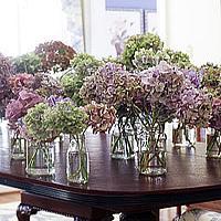 Jak zasuszyć kwiaty