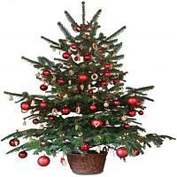 Jak stworzyć w domu świąteczną atmosferę