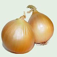 Jak wykorzystać cebulę
