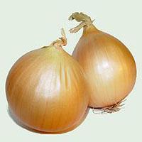 Jak przechowywać cebulę aby nie kiełkowała