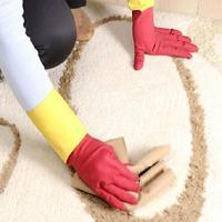 Jak pozbyć się zapachu moczu psa lub kota z dywanu