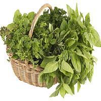 Jak przechowywać zioła