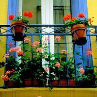 Jak zaaranżować kwiaty na balkonie