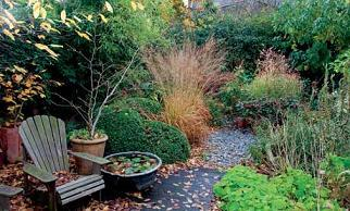 Jakie prace wykonywać w ogrodzie w listopadzie