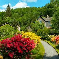 Jak zaplanować mało wymagający ogród