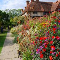 Jak zaaranżować powierzchnię w ogrodzie