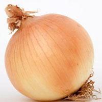 Jak uprawiać cebulę