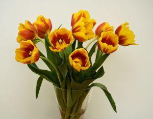 Co zrobić, aby kwiaty cięte utrzymały się dłużej w wazonie