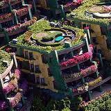 Jakie rośliny sadzić na dachu