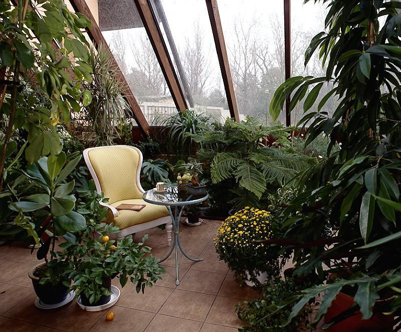 Jak zaaranżować ogród zimowy