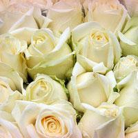 Jak efektownie ułożyć cięte kwiaty